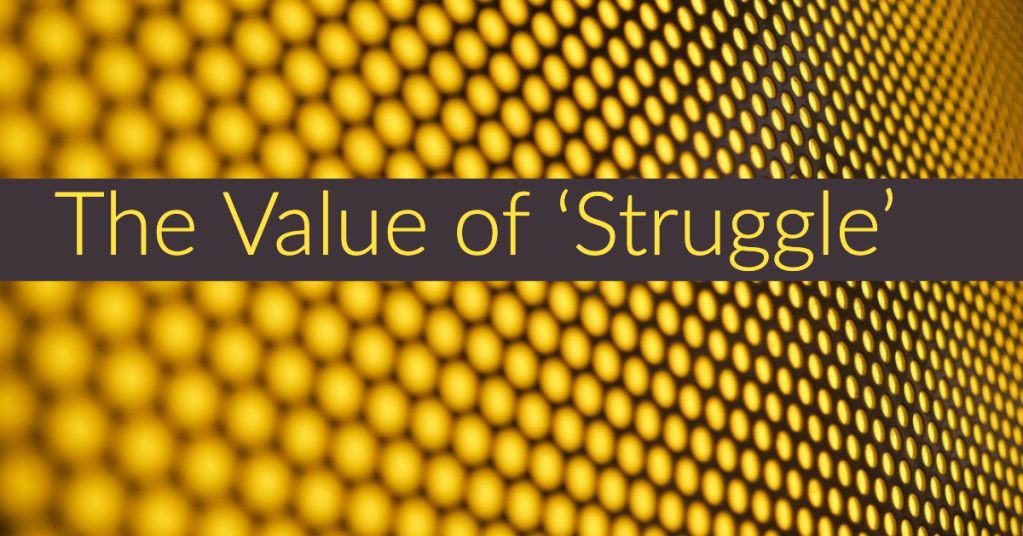The Value of Struggle
